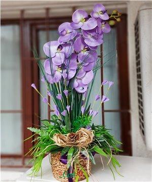 İthal Yapay Orkide