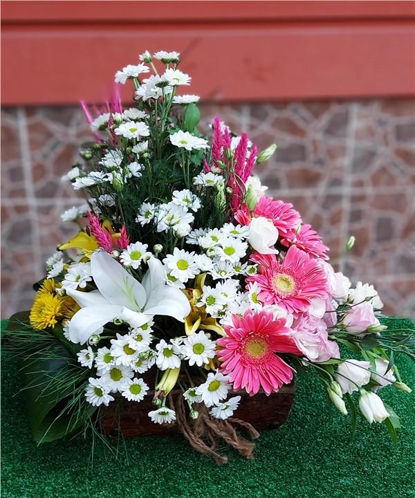 Ahşap Saksıda Karma Çiçek Aranjman