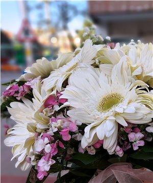 Paşabahçe Vazoda Beyaz Gerbera ve Hüsnü Yusuf